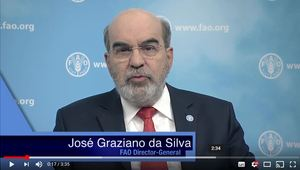 Message of the UNFAO Director-General