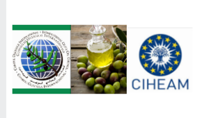 International Olive Council-Accreditation