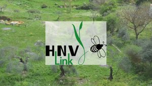 HNV-Link Project final conference