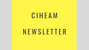 Thumb ciheam newsletter