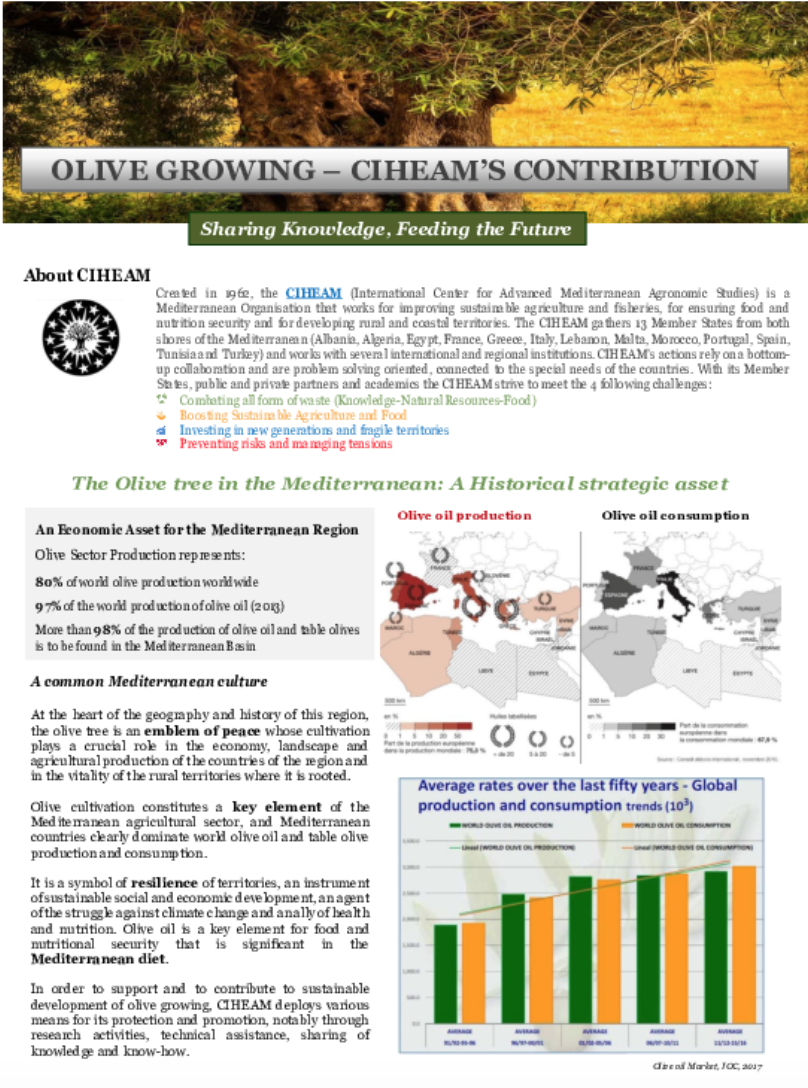 CIHEAM'S CONTRIBUTION – OLIVE GROWING