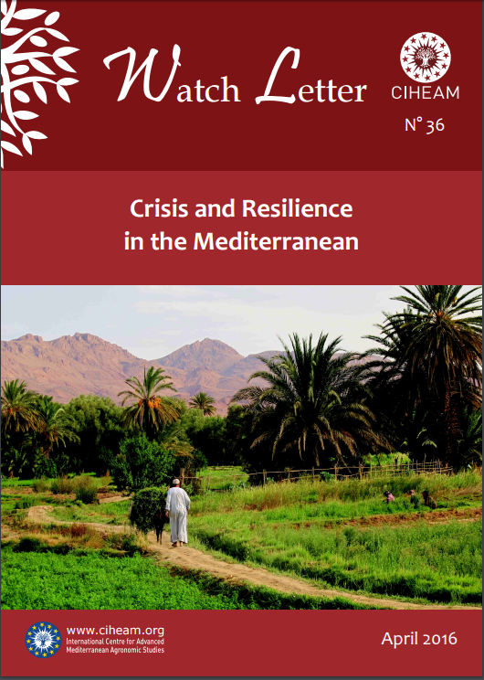 Crisis and Resilience in the Mediterranean