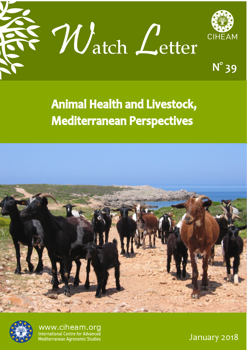 Animal Health and Livestock, Mediterranean Perspectives